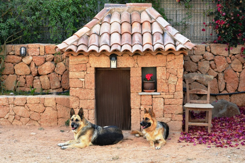 5 ideas for decorating a dog house mega bored for Dog house for german shepherd size